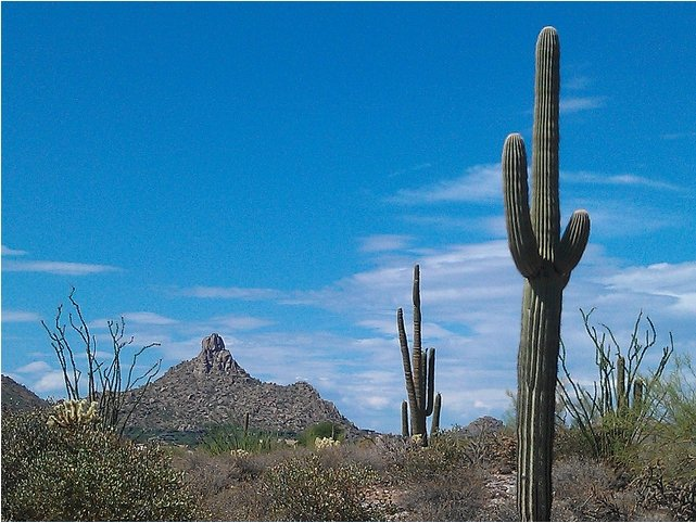 Pinnacle Peak Real Estate Scottsdale Arizona Luxury